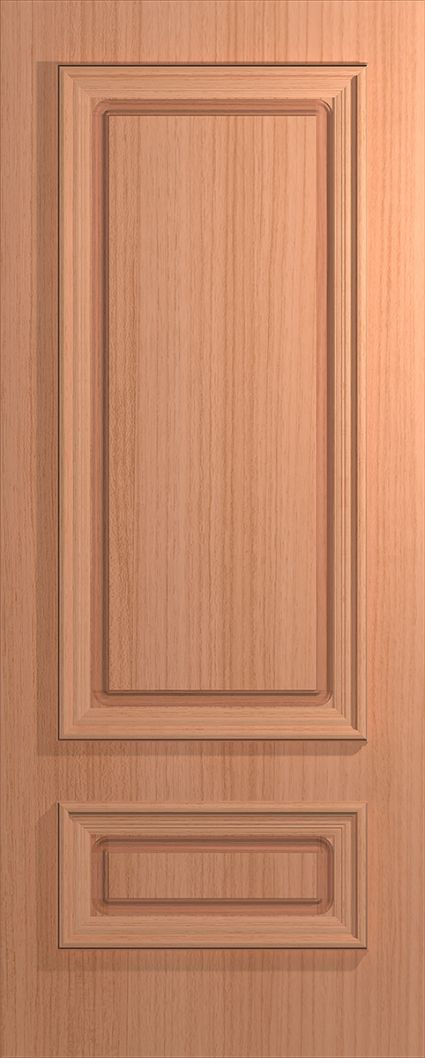 Door Feature